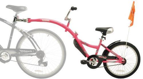 20 Co Bike, Pink