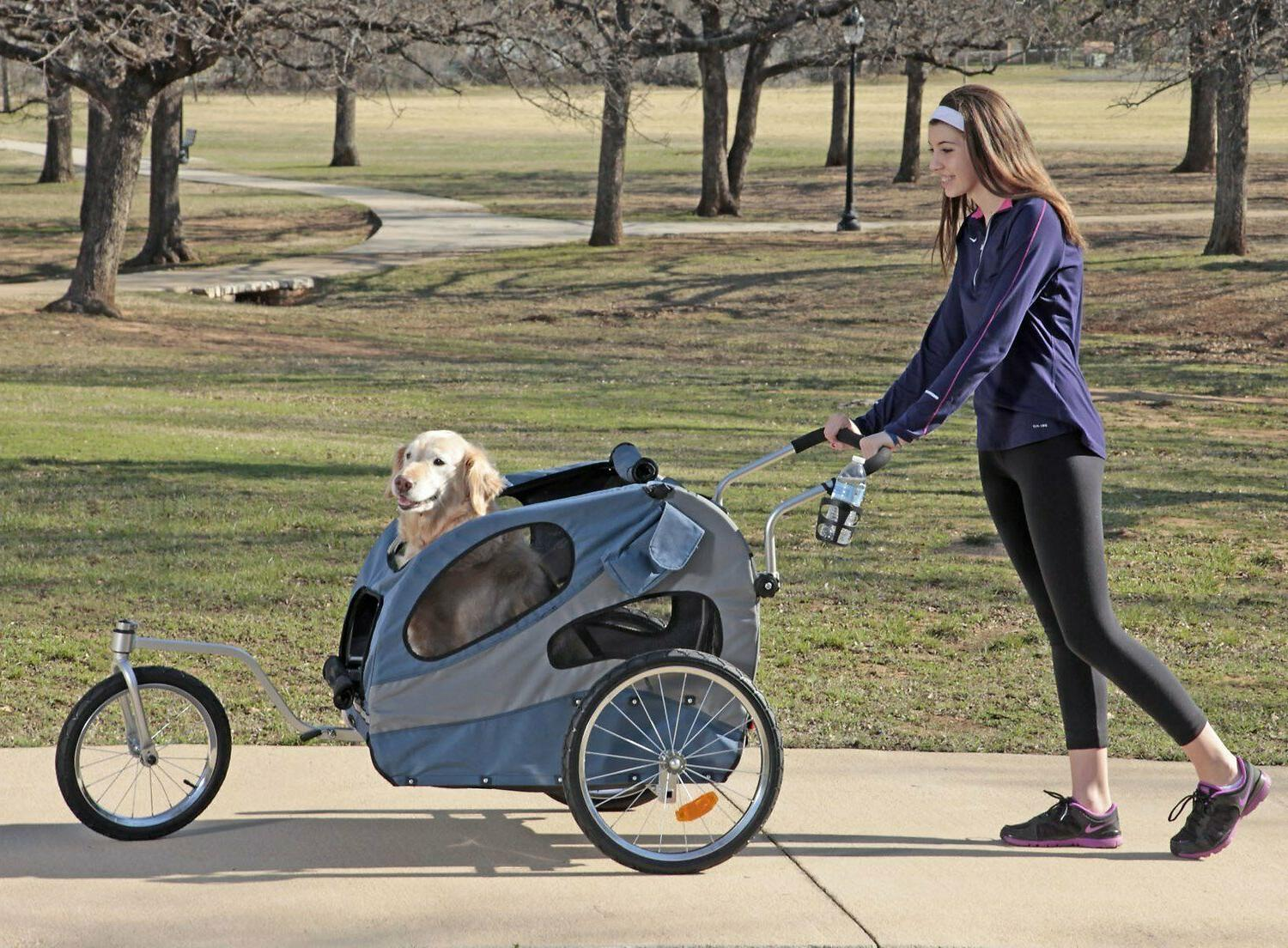 houndabout ii aluminum bike trailer for dogs
